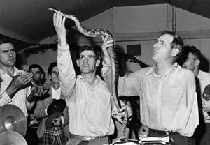 Snakehandling