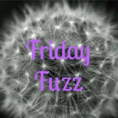 friday fuzz